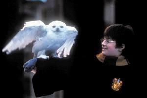 Daniel Radcliffe in una scena di Harry Potter e la pietra filosofale