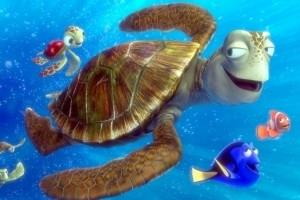Una immagine di Alla ricerca di Nemo