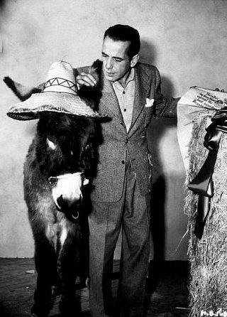 Humphrey Bogart in una foto promozionale per Il tesoro della Sierra Madre
