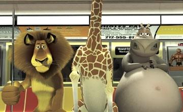 I simpatici protagonisti di Madagascar