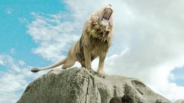 Il leone del primo film de Le cronache di Narnia