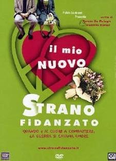 La copertina DVD di Il mio nuovo strano fidanzato