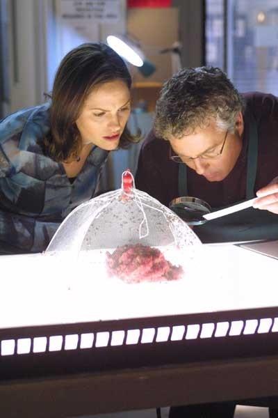 William L. Petersen e Jorja Fox in una scena di CSI