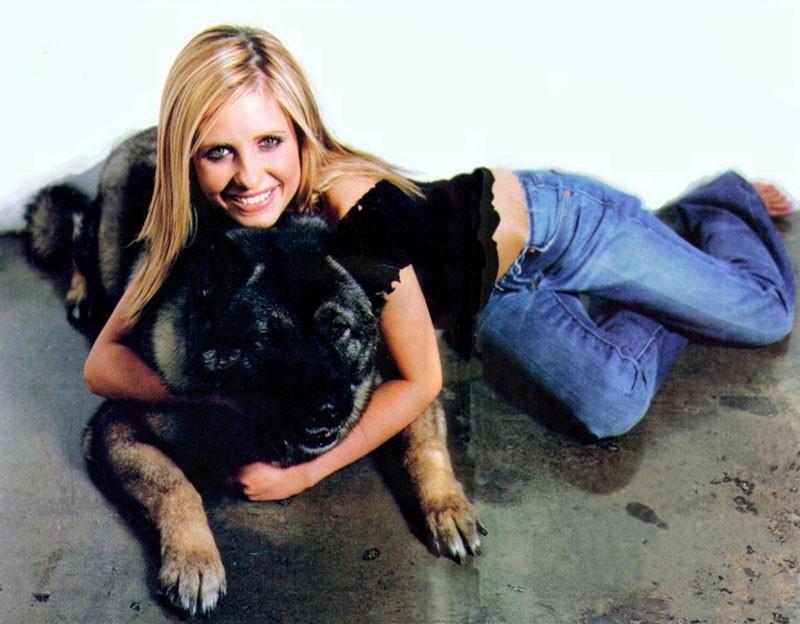 Sarah Michelle Gellar: la bella e la bestia