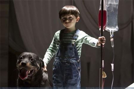 Il piccolo Seamus Davey-Fitzpatrick è Damien Thorn nel film Omen - Il presagio