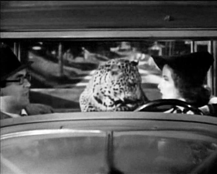 Cary Grant, il leopardo Baby e Katharine Hepburn in una scena di SUSANNA