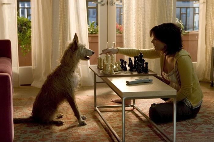 Sandra Bullock in una immagine del film  La casa sul lago del tempo