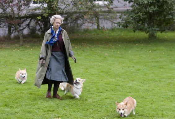 Helen Mirren in una scena del film The Queen
