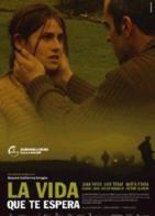 La copertina DVD di La vida que te espera