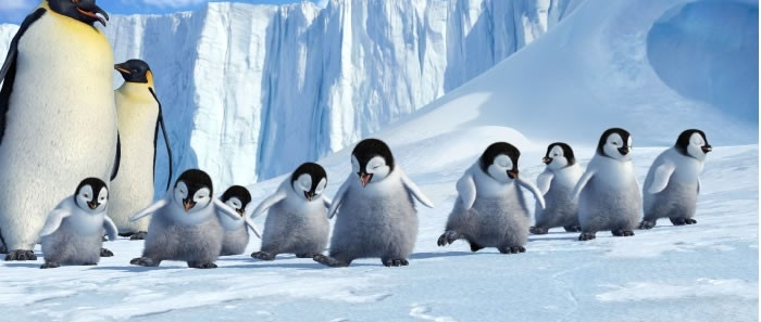 I teneri protagonisti del film Happy Feet