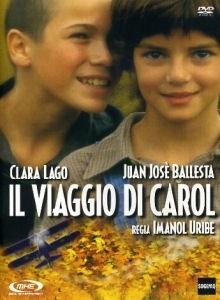 La copertina DVD di Il viaggio di Carol