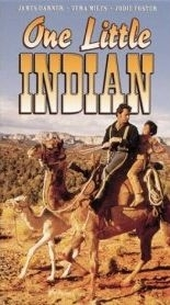 La locandina di Un piccolo indiano