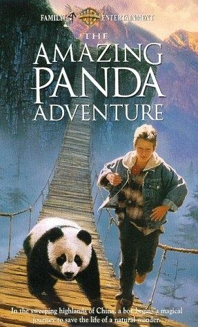 La locandina di Il piccolo panda