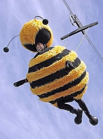 Cannes 2007: l'attore Jerry Seinfeld vestito da ape, si lancia nel vuoto per promuovere il film Bee Movie