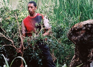 Orlando Jones in una scena del film Primeval