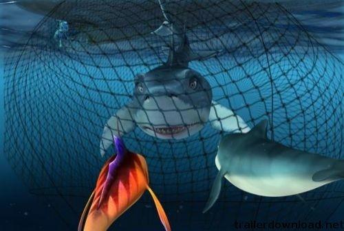 Una immagine del film  The Reef - Amici per le pinne