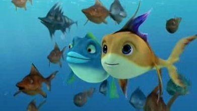 Una tenera immagine del film  The Reef - Amici per le pinne