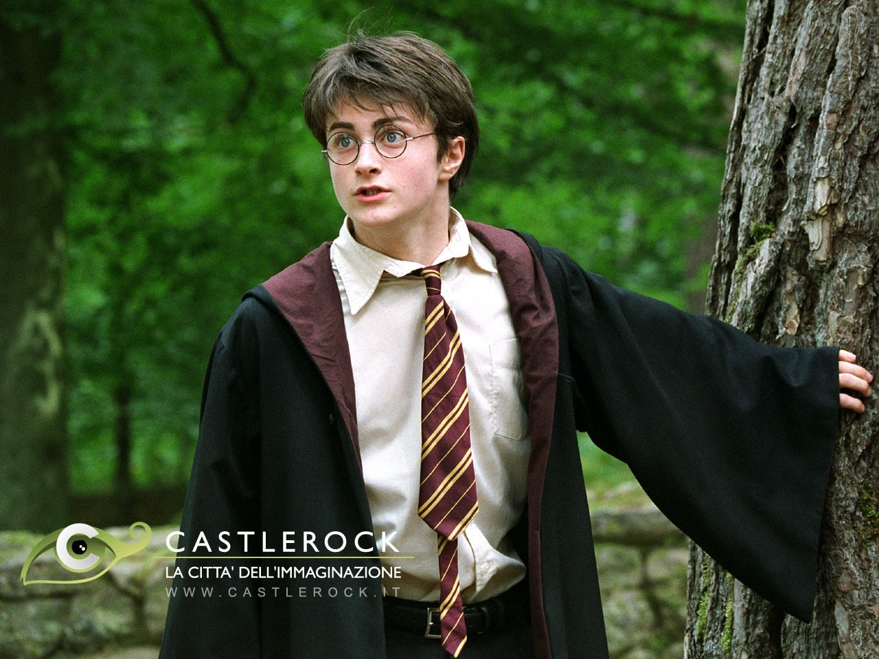 Wallpaper del film Harry Potter e il prigioniero di Azkaban con una bella immagine di Daniel Radcliffe