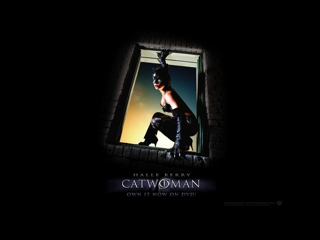 Wallpaper del film Catwoman