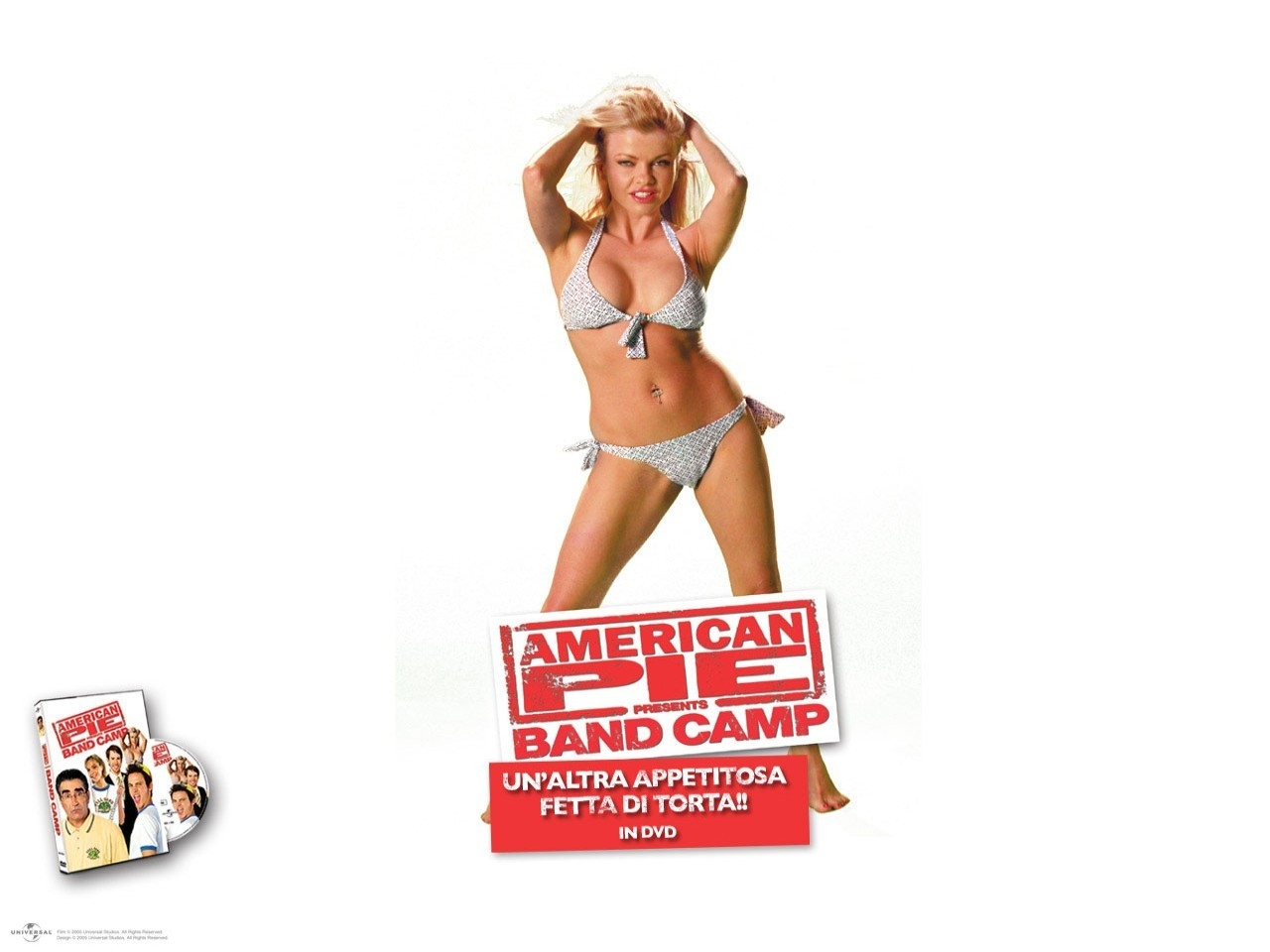 Wallpaper del film American Pie - Band Camp