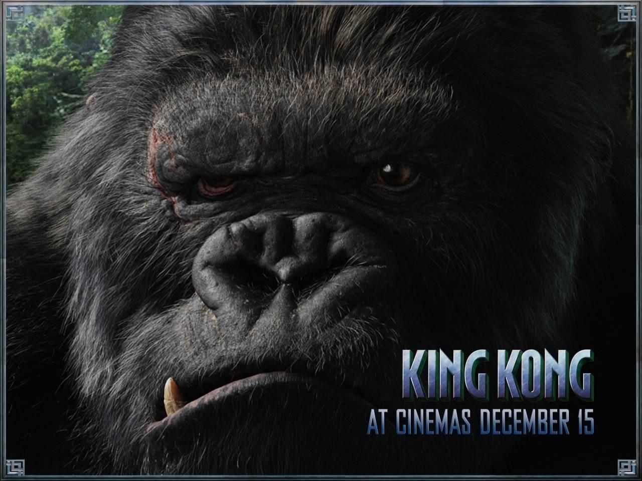 Wallpaper del film King Kong (2005)