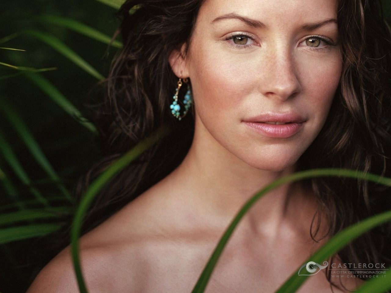 Wallpaper di una splendida Evangeline Lilly