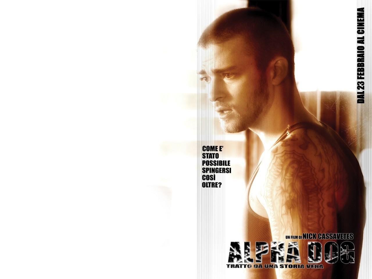 Wallpaper del film Alpha Dog con Justin Timberlake