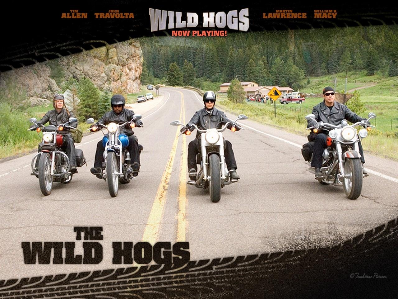 Wallpaper del film Svalvolati on the road