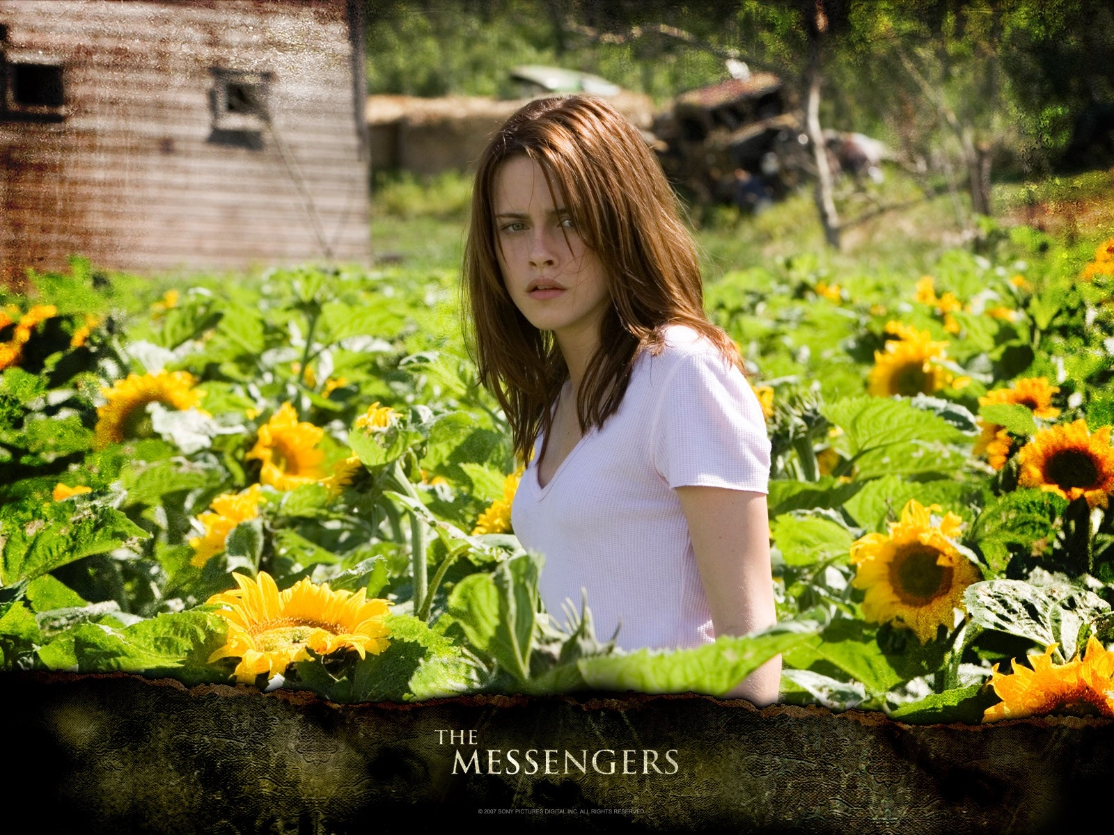 Wallpaper del film The Messengers con Kristen Stewart