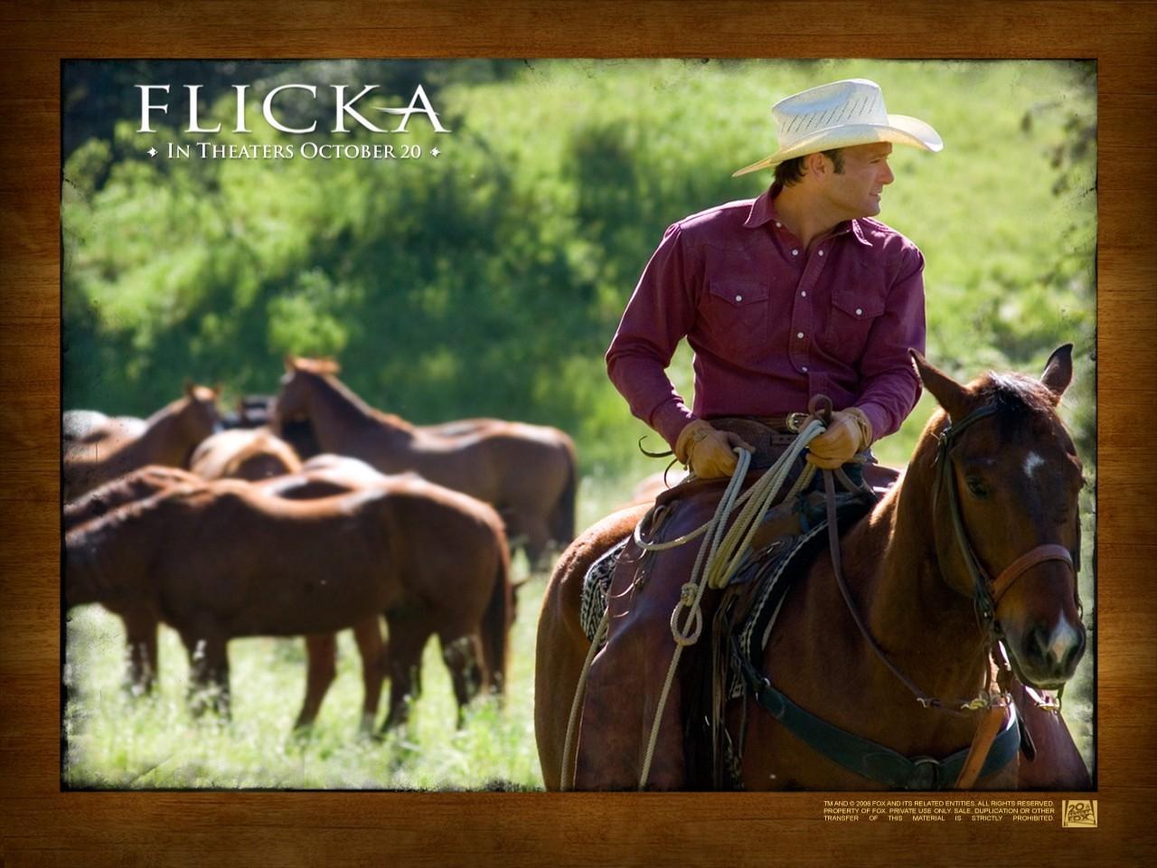 Un wallpaper del film Flicka - Uno Spirito libero
