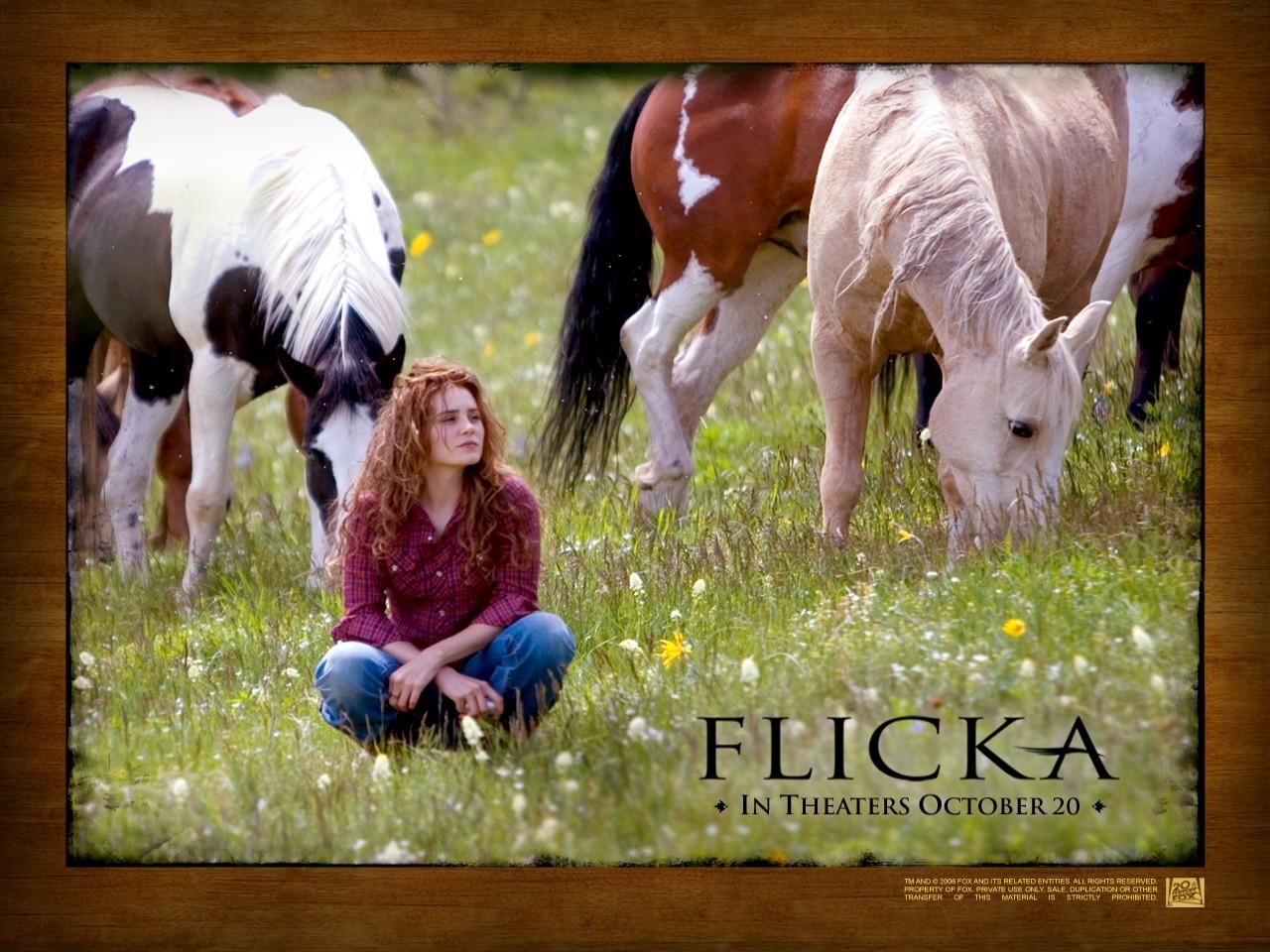 Wallpaper del film Flicka - Uno Spirito libero con Alison Lohman
