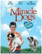 La locandina di I cani dei miracoli