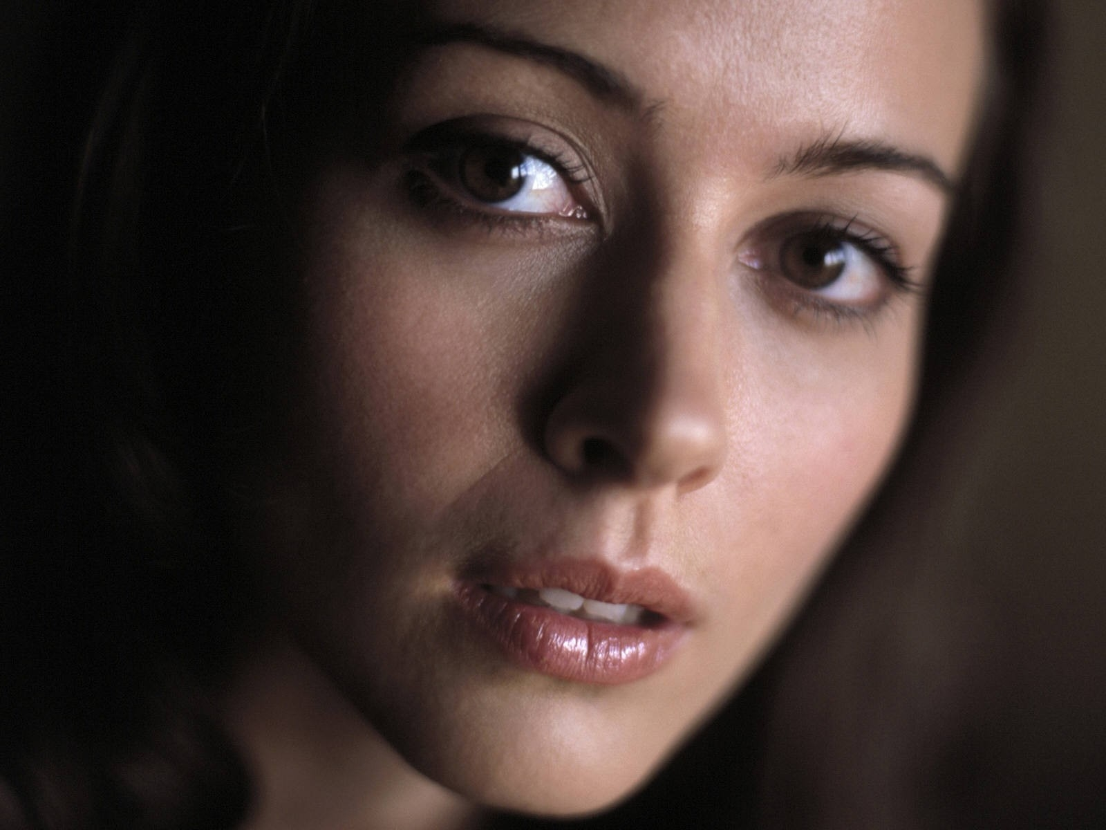 Wallpaper Amy Acker - 5