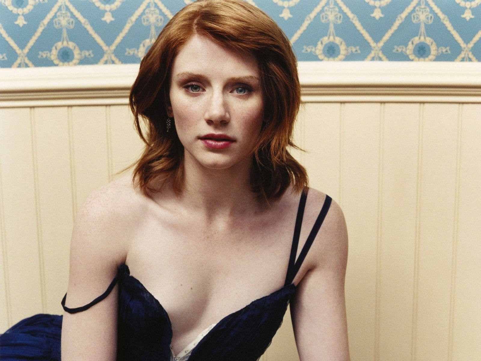 Wallpaper : una sensuale Bryce Dallas Howard