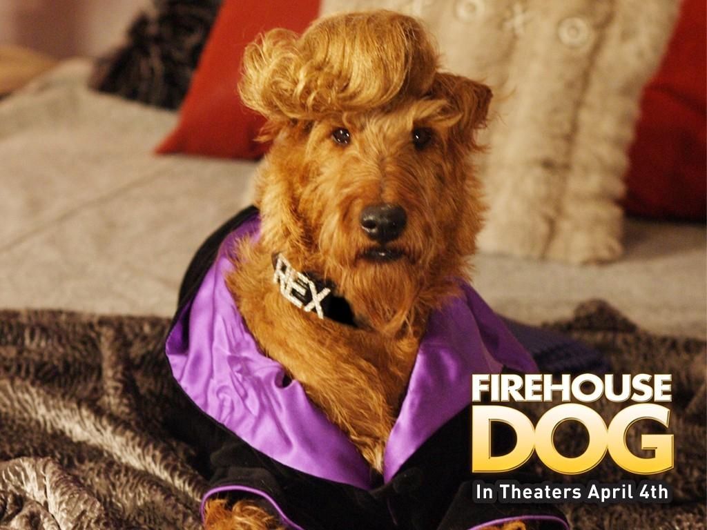 Wallpaper del film Il cane pompiere