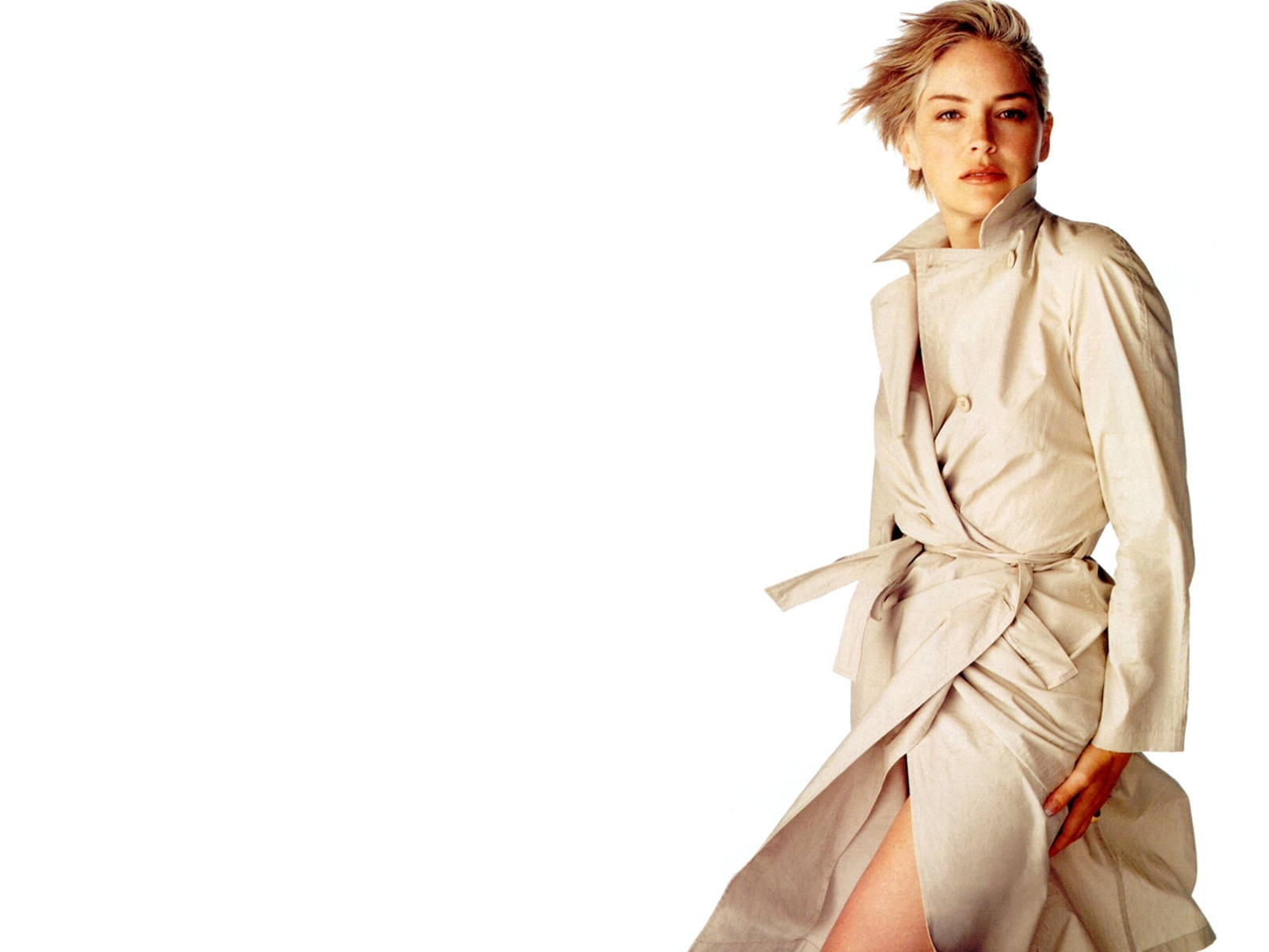 Wallpaper di Sharon Stone, in versione elegante