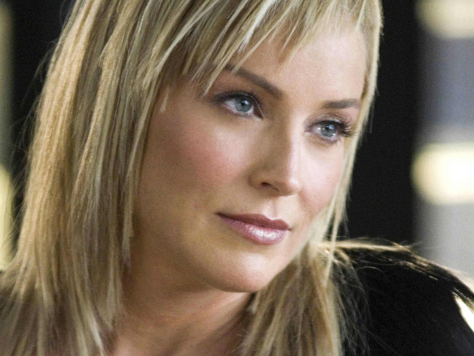Wallpaper: un primo piano di Sharon Stone