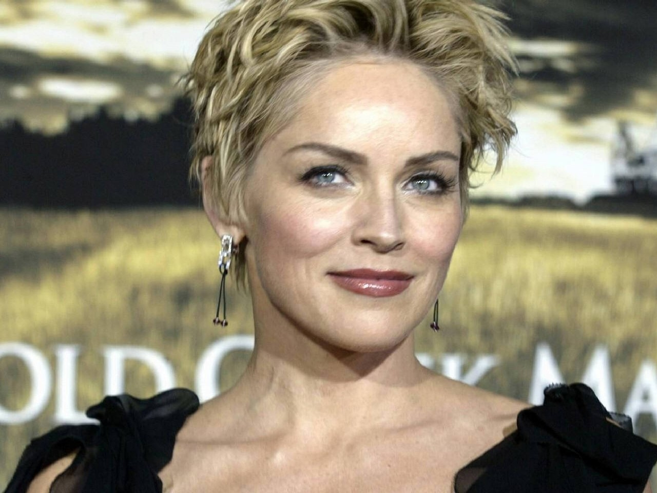 Wallpaper di Sharon Stone, una delle ultime dive del cinema americano