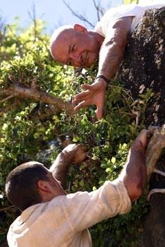 Matthew Fox e Terry O'Quinnnell'episodio 'Il coniglio bianco' di Lost