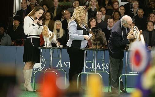Kristin Davis in una scena di Sex and the City, nell'episodio La guerra fredda