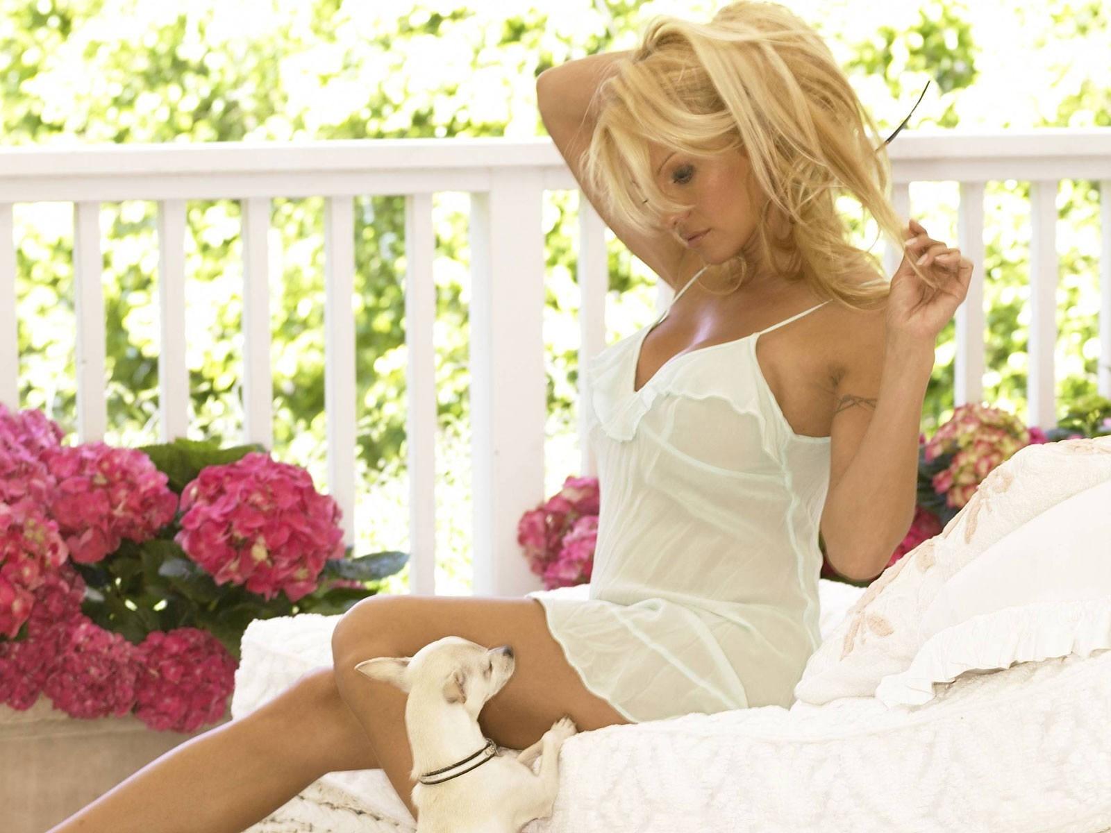 Wallpaper di Pamela Anderson con un cane