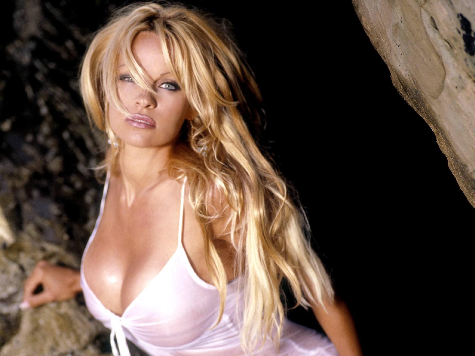 Wallpaper - curve esplosive per Pamela Anderson