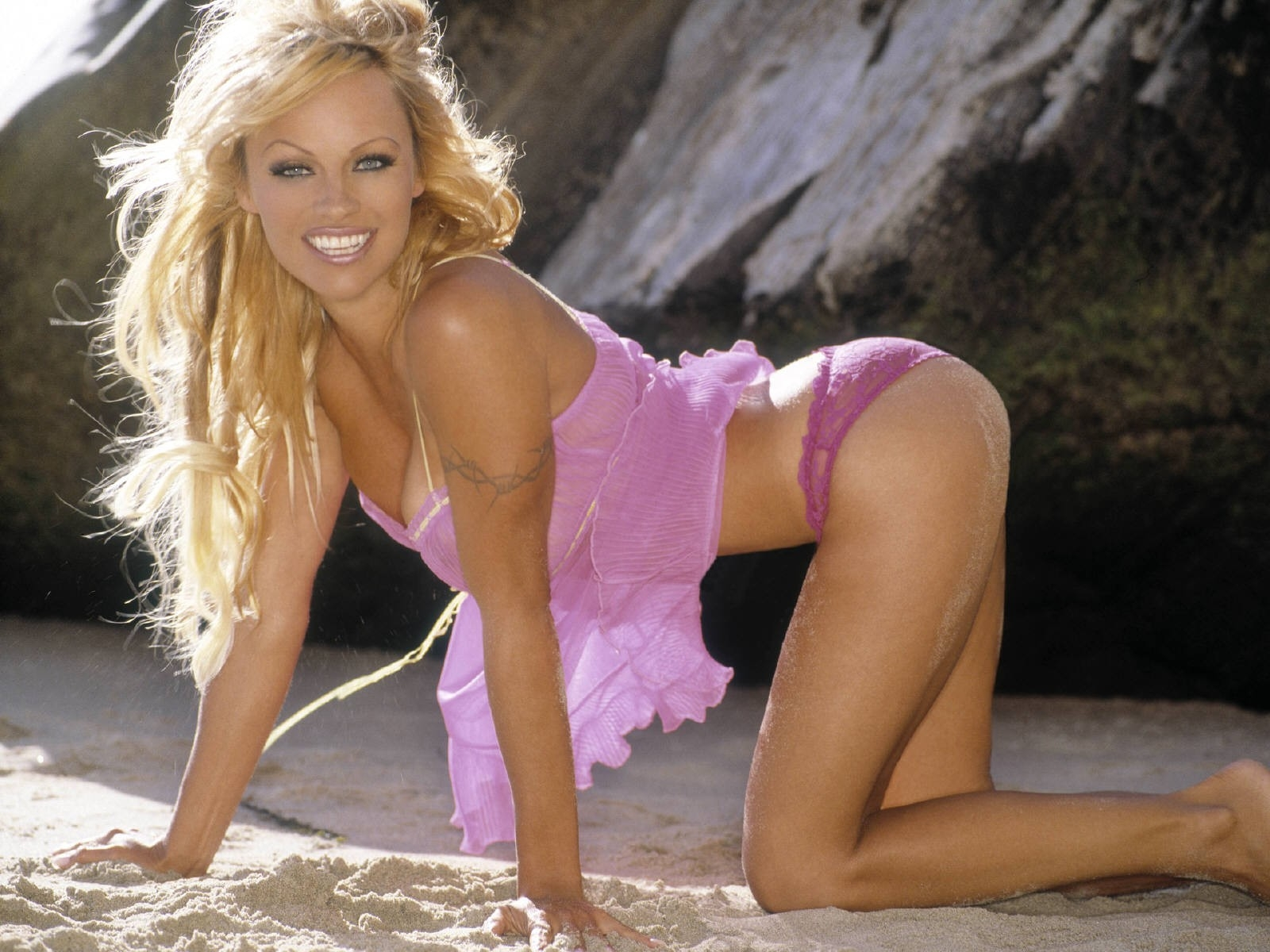 Wallpaper di Pamela Anderson in posa felina