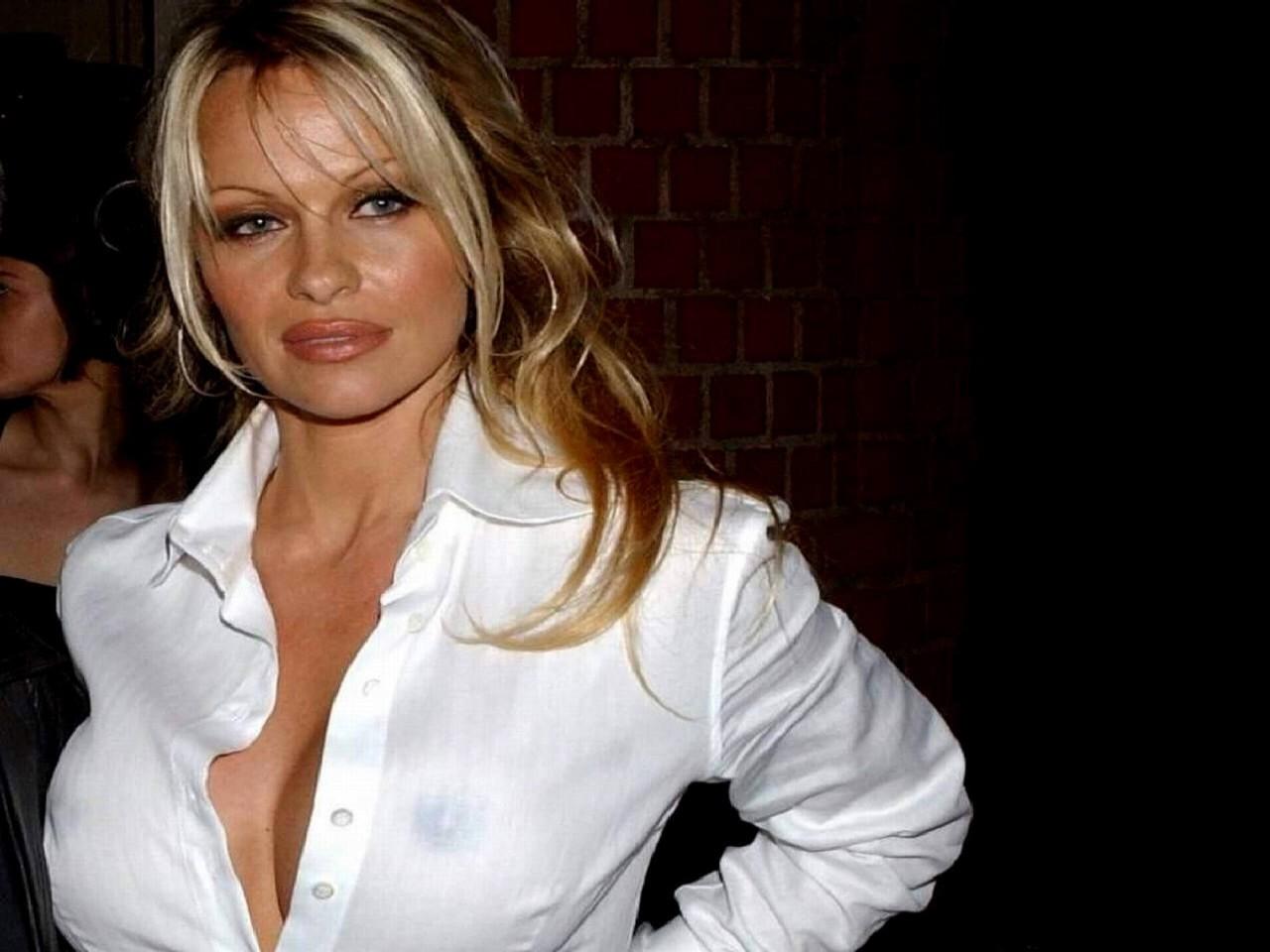 Wallpaper - trasparenze maliziose per Pamela Anderson