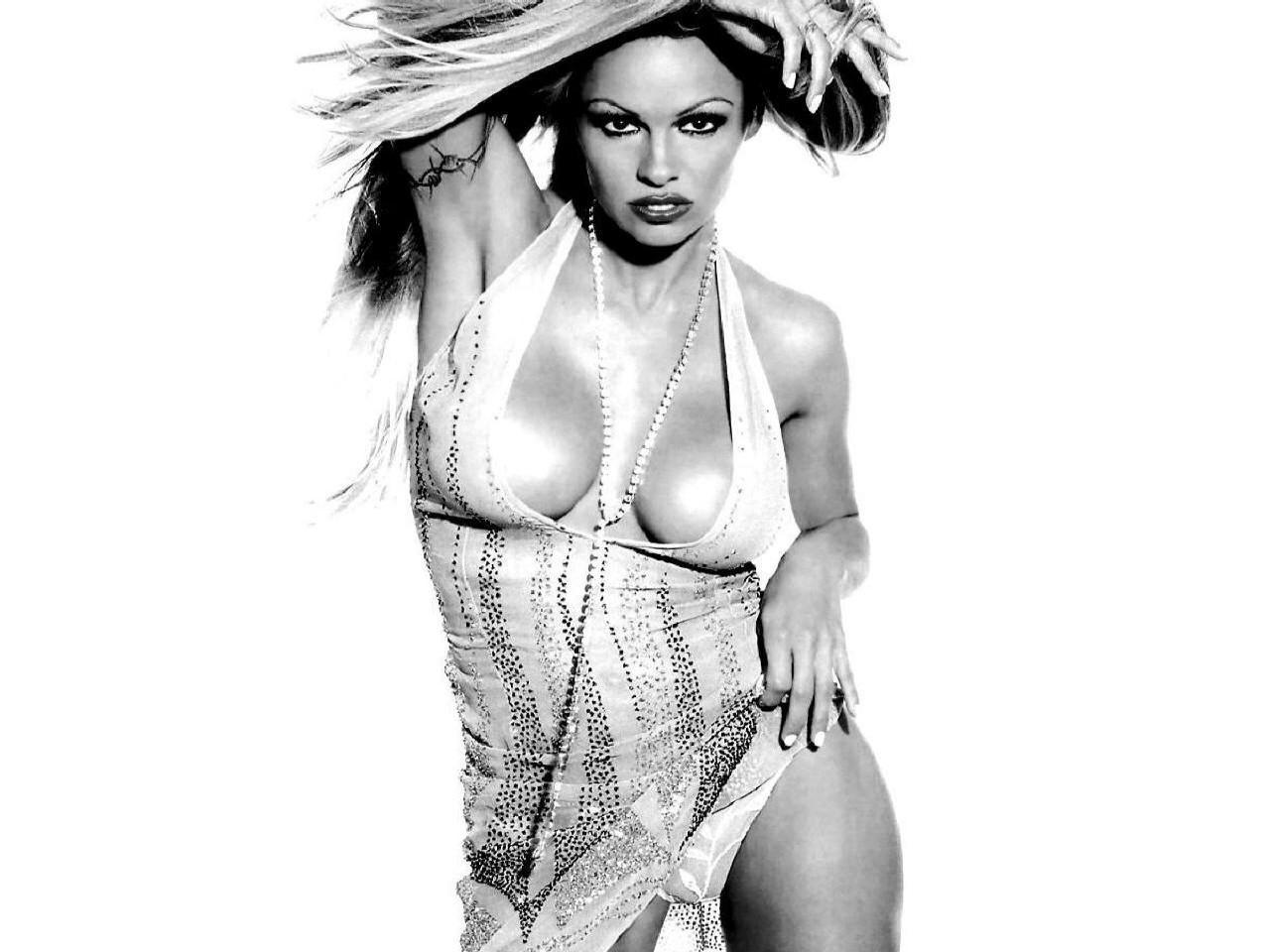 Wallpaper di un'esplosiva Pamela Anderson