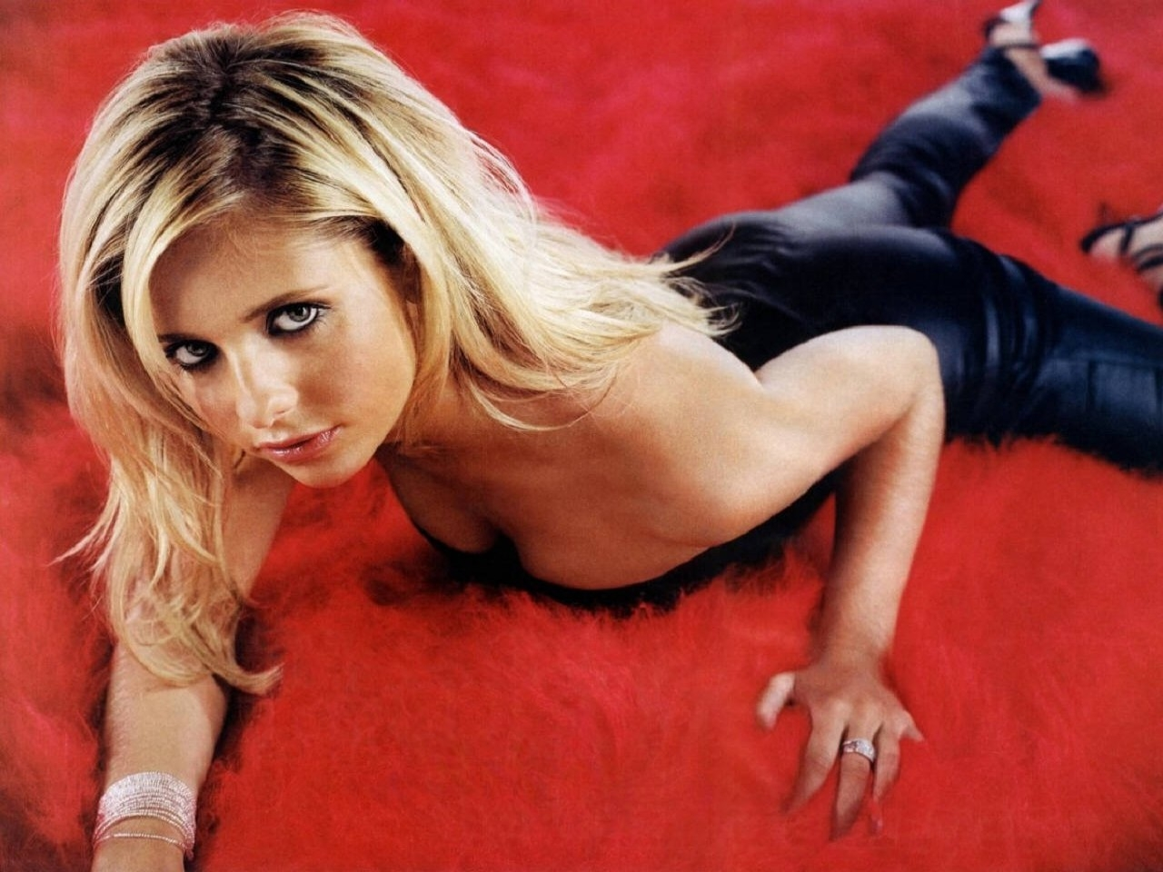 Wallpaper di Sarah Michelle Gellar, la star di Buffy e interprete di tanti horror tra i quali The Grudge