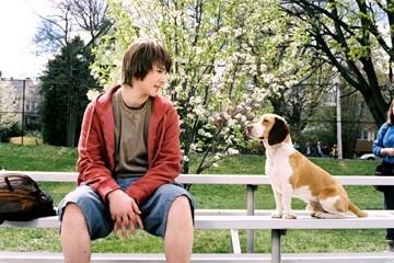 Alex Neuberger in una scena del film Underdog