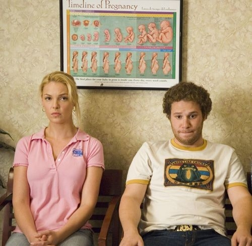 Katherine Heigl e Seth Rogen in una scena della commedia Molto incinta