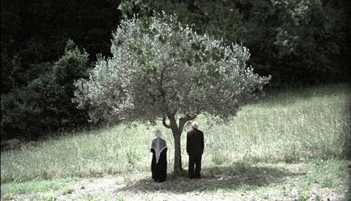 Un'immagine del film La ballata bianca