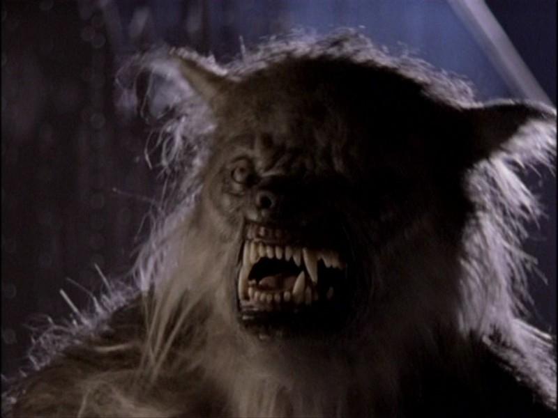 Una scena dell'episodio 'Notte di luna piena' di Buffy - L'ammazzavampiri
